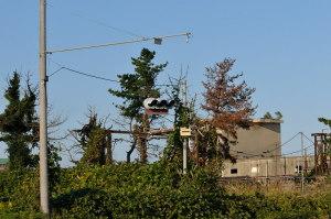 旧日本加工製紙高萩工場4
