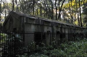 日本化薬側の廃墟群