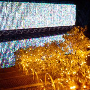 あしかがフラワーパーク 光と花の庭から