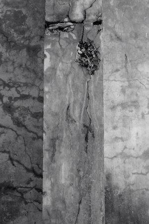 静かに侵食される壁