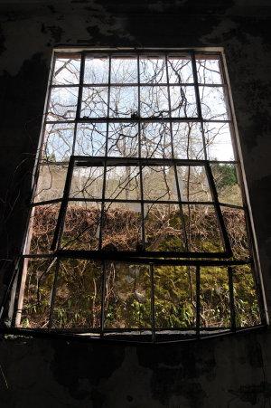 枠のみの窓