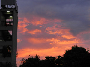 夕日が綺麗だナー