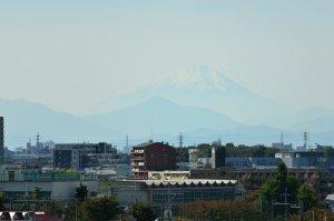 今日は富士山が見えた