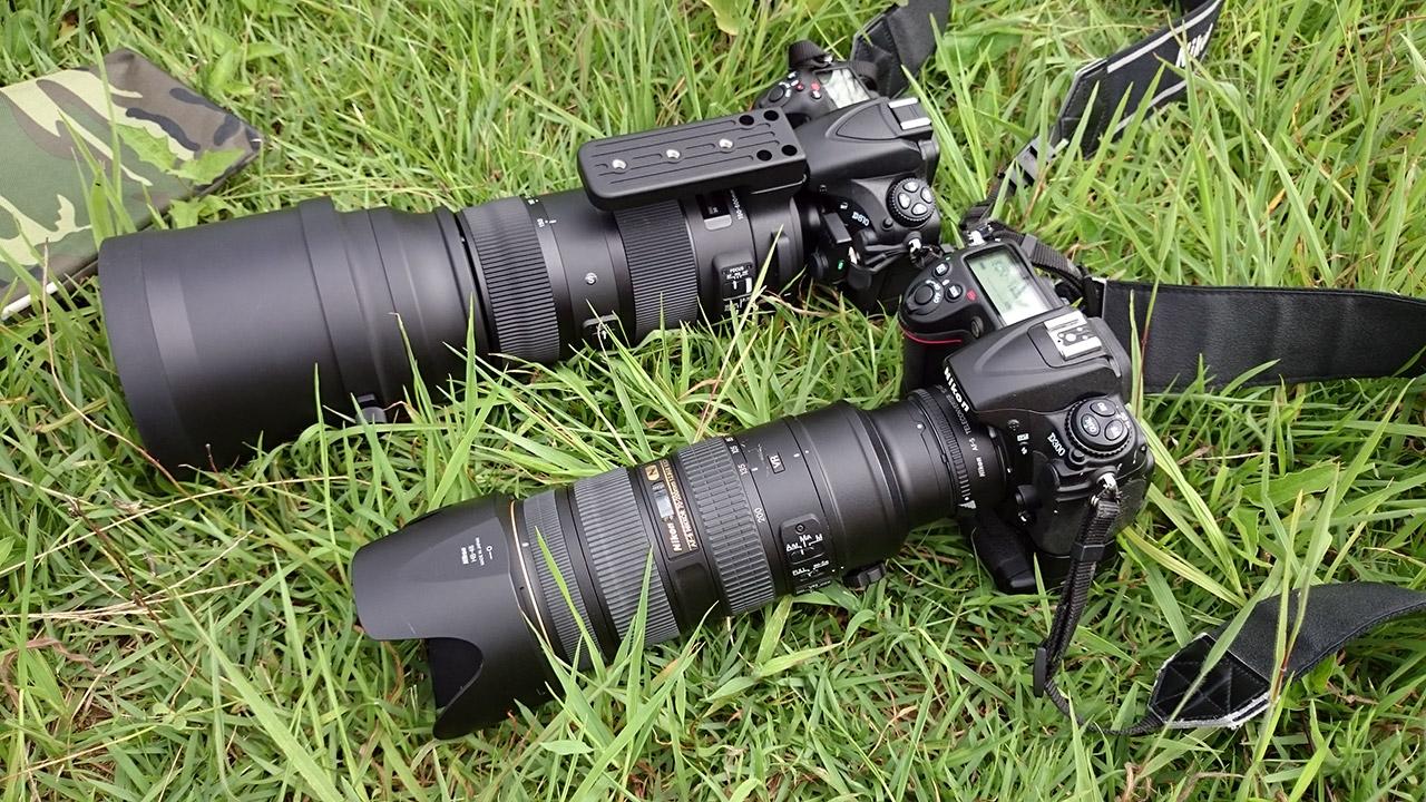 Nikon D810とD300