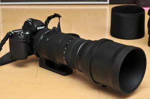 Nikon F100とSIGMA 150-600mm Sports