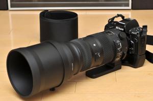 Nikon F90XとSIGMA 150-600mm Sports