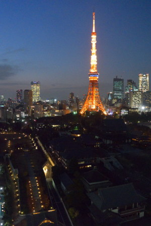 ビルから望む東京タワーと増上寺