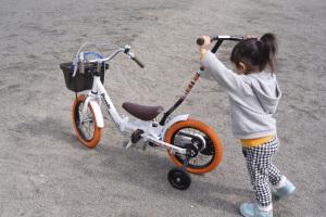 People いきなり自転車プレミアム