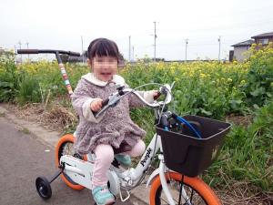 いきなり自転車で