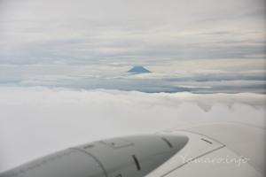 富士山が見えた