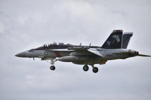 F/A-18F(500)