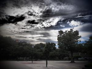 光が丘公園から -ドラマチックトーン