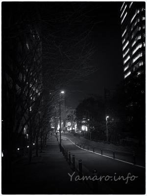 原宿の夜スナ