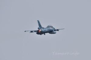 F-2B(43-8128)