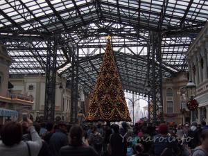 もうクリスマスツリー