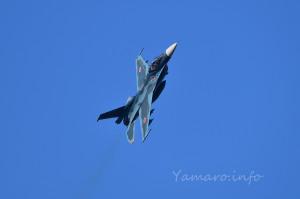 F-2A(