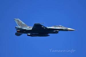 F-2A(43-8528)