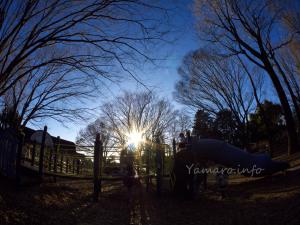 光が丘公園にて