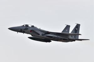 F-15DJ(92-8098)
