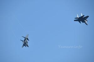F-15DJ(82-8063)とF-15J(22-8813)
