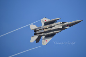 F-15J(32-8819)