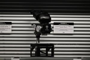 AF-S NIKKOR 180-400mm f/4E TC1.4 FL ED VR (550mm)