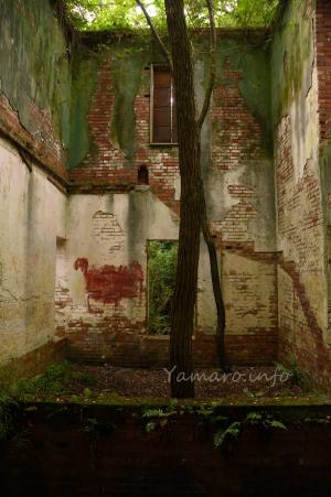 赤レンガの廃墟