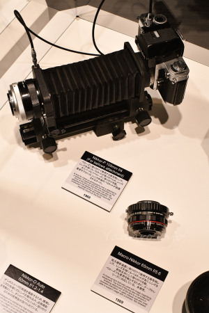 Nikkor-P 105mm f/4  Macro-Nikkor 65mm f/5.6