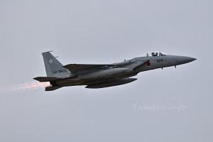 F-15J(42-8828)