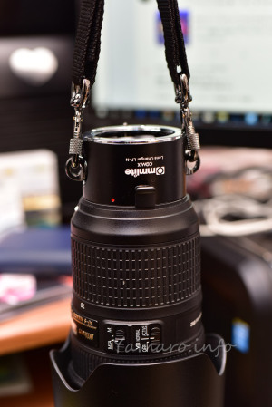 AF-S 24-70mmをCommliteのレンズホルダーに装着