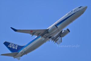 ANA B737-800(JA81AN)