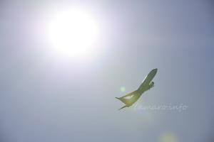 太陽とJAL