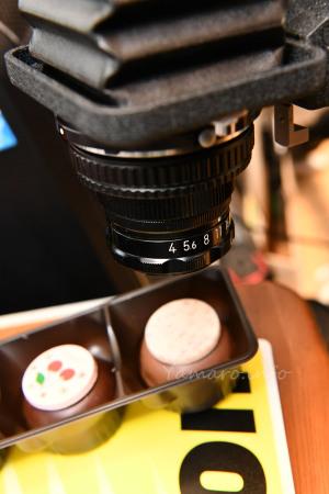 EL-NIKKOR 50mm f/4 + PB-4