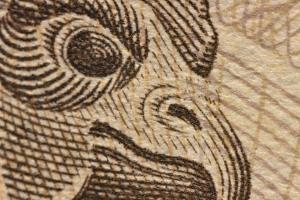 一万円札のクローズアップ