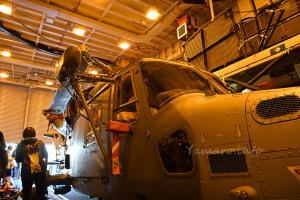 ワイルドキャット HMA Mk.2 (AW159)
