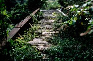 水根貨物線遺構 第二境橋梁
