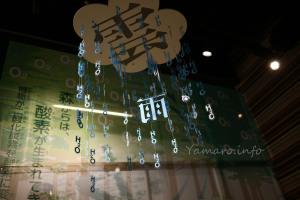 水と緑の展示
