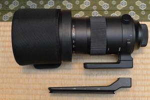 SIGMA 150-600mm F5-6.3 DG OS HSM | Sports用