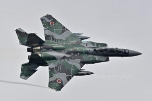 F-15DJ(32-8083)