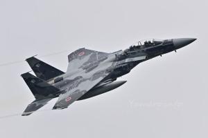 F-15DJ(92-8070)
