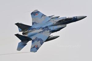 F-15DJ(72-8090)