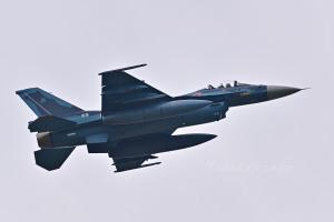F-2A(43-8529)
