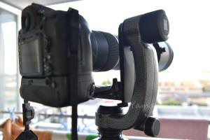 GITZO GHFG1とSIGMA 150-600mm Sportsの組合せ