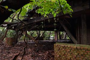 森に侵食されつつあるBBQ場