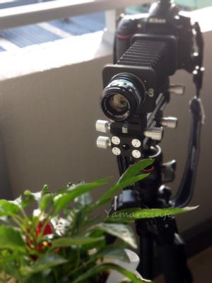 Nikon D810 + EL-NIKKOR 135mm f/5.6 (PB-4)