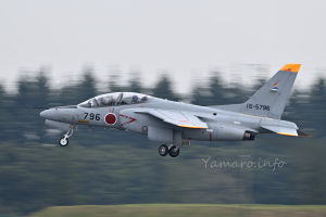 T-4(16-5796)