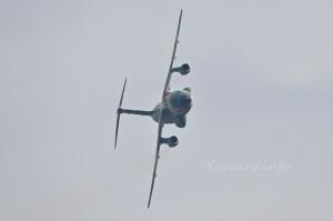 C-1(08-1030)