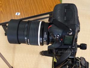 D810とDC-Nikkor 135mm f/2D