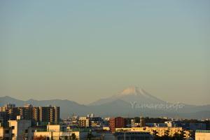 初冬の富士山