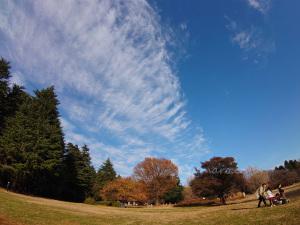 光が丘公園の空
